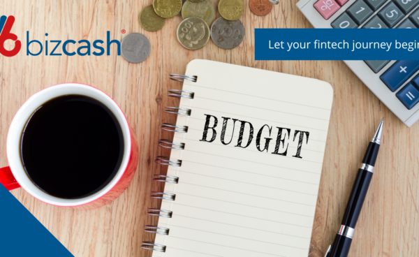 Bizcash Business Budget cashflow
