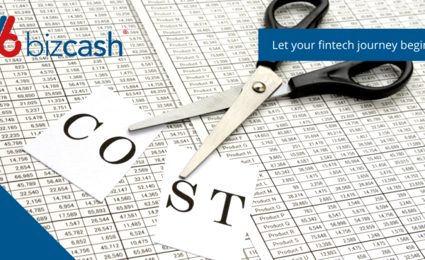 Bizcash save costs in your business for improved profits
